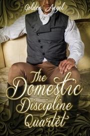 Domestic Discipline Box Set PDF Download