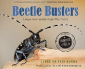 Download Beetle Busters