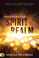 Download and Read Online Discerning the Spirit Realm