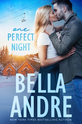 One Perfect Night book cover