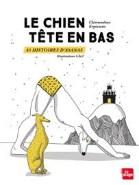 Le Chien T Te En Bas 45 Histoires D Asanas