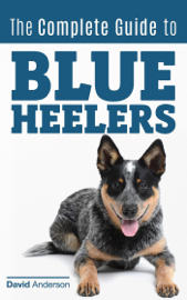 The Complete Guide to Blue Heelers - aka The Australian Cattle Dog. Learn About Breeders, Finding a Puppy, Training, Socialization, Nutrition, Grooming, and Health Care. Over 50 Pictures Included!