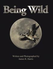 Download Being Wild
