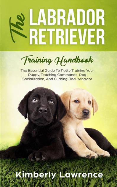 Best Way To Potty Train: The Labrador Retriever Training Handbook: The Essential