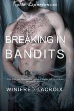 Katie Experiences #2: Breaking In Bandits (Gang Bang Erotica)