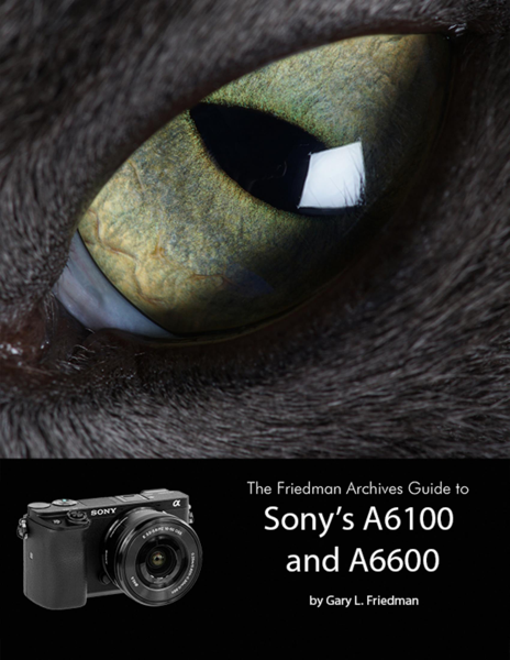 The Friedman Archives Guide to Sony's Alpha 6100 and 6600