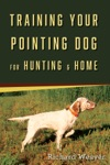 Training Your Pointing Dog For Hunting  Home