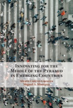 Innovating for the Middle of the Pyramid in Emerging Countries