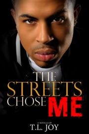 The Streets Chose Me Hot Boyz Series Prelude