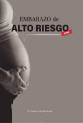 El Embarazo de Alto Riesgo 2