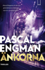 Pascal Engman - Änkorna bild