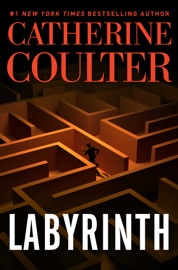 Labyrinth PDF Download