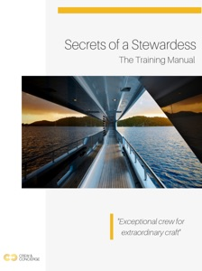 Secrets of a Stewardess: The Training Manual Book Cover