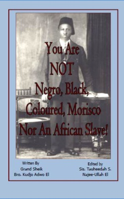 You Are NOT Negro, Black, Coloured, Morisco Nor An African Slave!