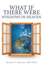 What If There Were Windows In Heaven