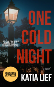 One Cold Night Book Cover
