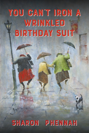 You Can't Iron a Wrinkled Birthday Suit book