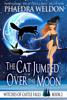 Phaedra Weldon - The Cat Jumped Over The Moon artwork