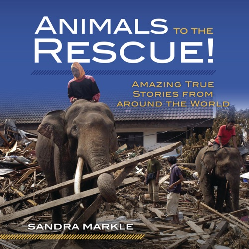 Animals to the Rescue!