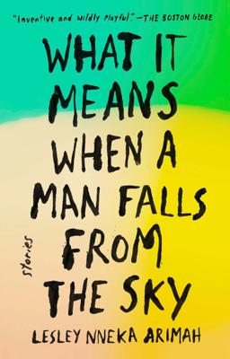 What It Means When a Man Falls from the Sky - Lesley Nneka Arimah book