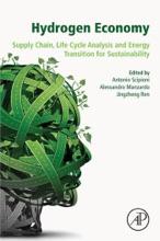 Hydrogen Economy (Enhanced Edition)