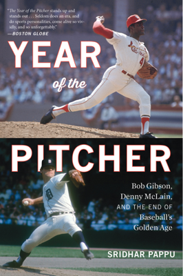 The Year of the Pitcher - Sridhar Pappu book