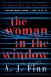 The Woman in the Window - A. J. Finn book summary