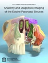 Anatomy And Diagnostic Imaging Of The Equine Paranasal Sinuses