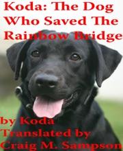 Koda: The Dog Who Saved The Rainbow Bridge