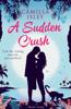 Camilla Isley - A Sudden Crush artwork