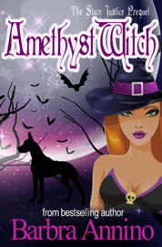 Amethyst Witch book