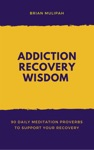 Addiction Recovery Wisdom 90 Daily Meditation Proverbs To Support Your Recovery