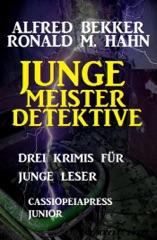 Junge Meisterdetektive