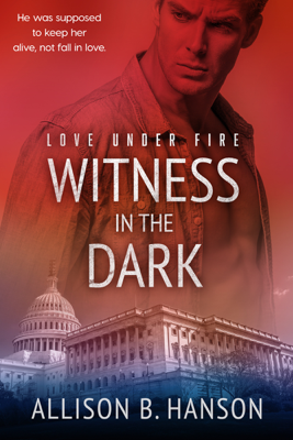 Witness in the Dark - Allison B. Hanson book