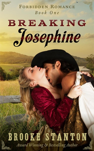 Breaking Josephine - Brooke Stanton book cover