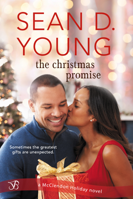 The Christmas Promise - Sean D. Young book