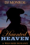 Haunted Heaven A Wild Skies Gay Romance