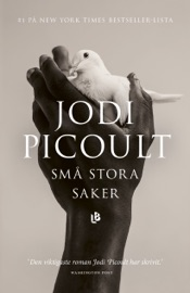 Små stora saker PDF Download