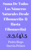 Pedro Hugo GarcГa PelГЎez - Suma De Todos Los NГєmeros Naturales Desde Fibonacci(n-1) Hasta Fibonacci(n) ilustraciГіn