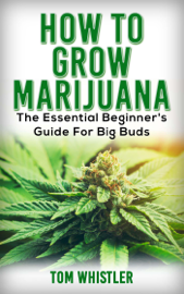 How to Grow Marijuana : The Essential Beginner's Guide for Big Buds