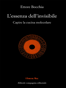 L'essenza dell'invisibile Libro Cover