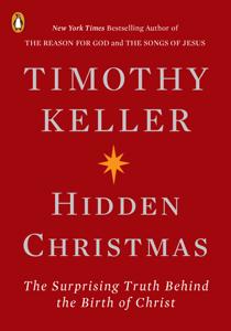 Hidden Christmas Cover Book