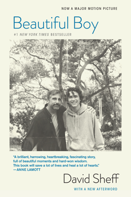David Sheff - Beautiful Boy book