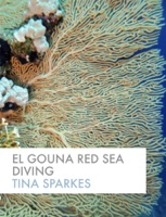 El Gouna Red Sea  Diving
