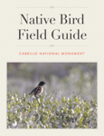 Cabrillo National Monument: Native Bird Field Guide