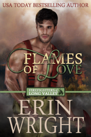 Flames of Love book