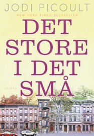 Det store i det små PDF Download