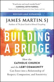 Building a Bridge book