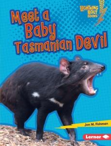 Meet a Baby Tasmanian Devil