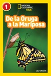 National Geographic Readers De La Oruga A La Mariposa Caterpillar To Butterfly